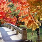 小春日和とは、どういう意味? いつの季語ですか?
