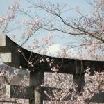 神社の鳥居の意味って何ですか?