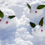 雪の種類、言葉、表現を 70コ集めてみました! 【一覧表】