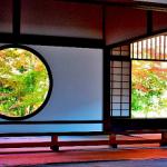 美しい日本語の単語 20