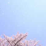 日本の四季について、あらためて考えてみました