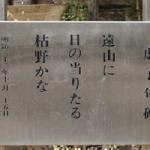 高浜虚子の俳句 100選 -春夏秋冬-