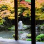 京都の和歌 20選 -優艶-