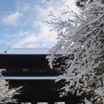 雪の和歌 12選 【現代語訳】付き